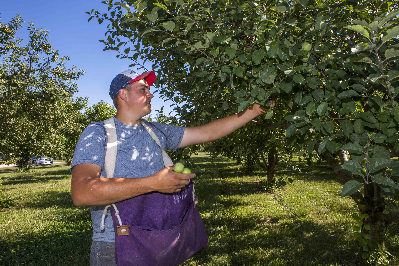 Photo gallery of Gardner Orchard