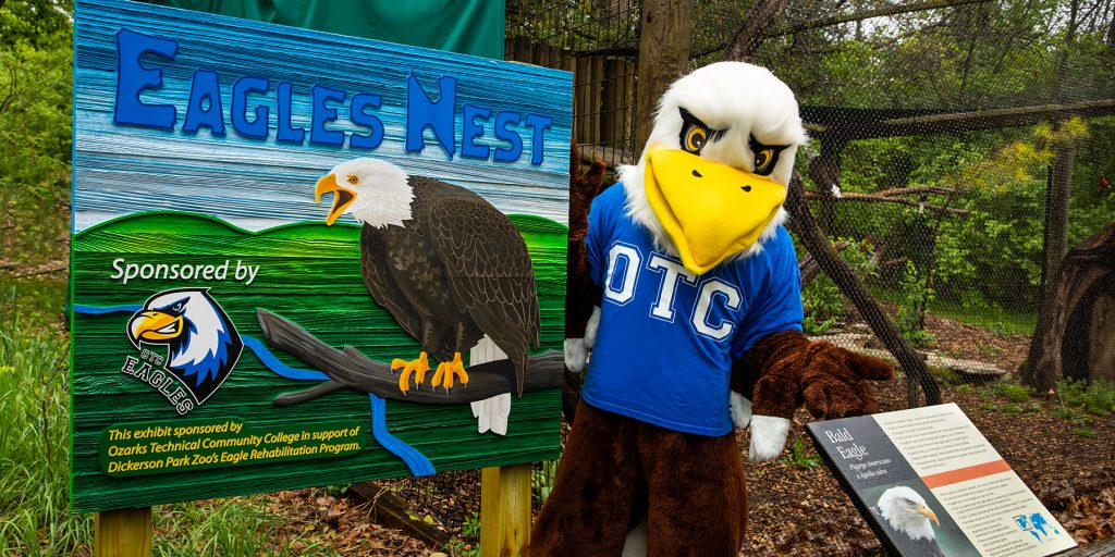 Ozzy poses with OTC's new eagle exhibit sign at the Dickerson Park Zoo